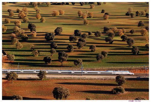 paisaje-trenes-ave-foto-sharing